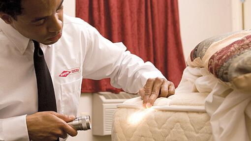 Orkin technician inspecting a mattress for bed bugs