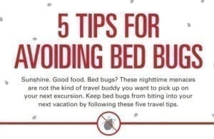 Bed Bug Travel Tips Cover