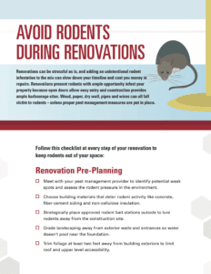 tip sheet to avoid rodents during renovations