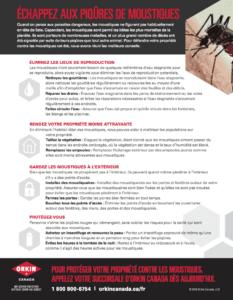 Un guide pour prévenir les moustiques