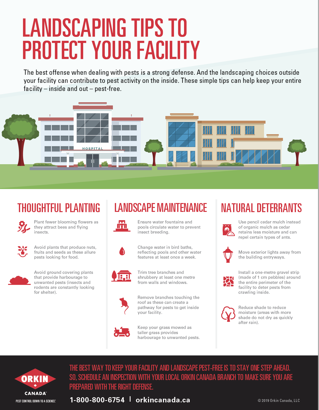 Landscaping tip sheet to protect your facility