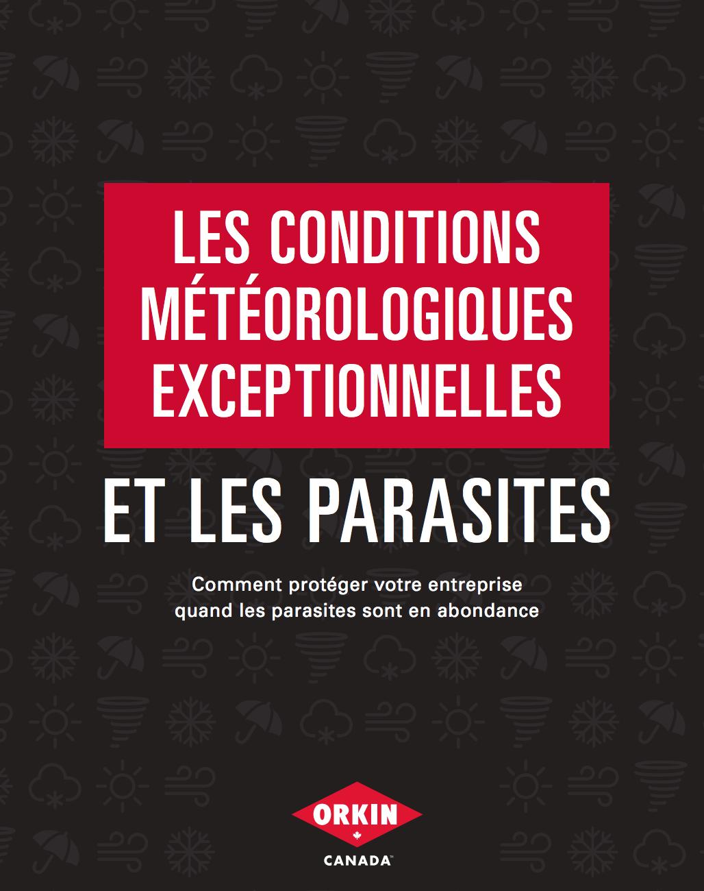 Un guide de prévention contre les parasites lors de conditions météorologiques exceptionnelles