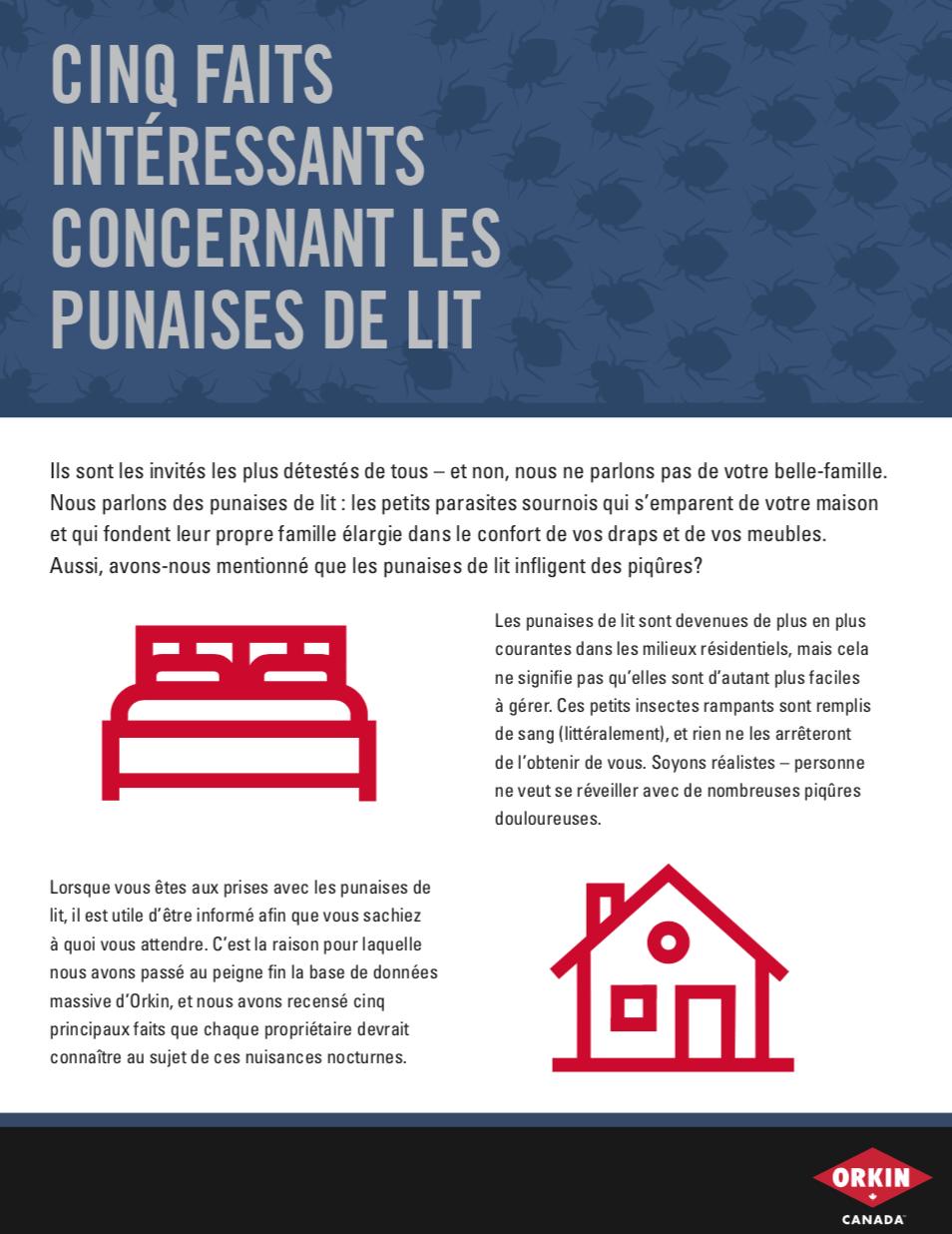 Cinq faits intéressants concernant les punaises de lit