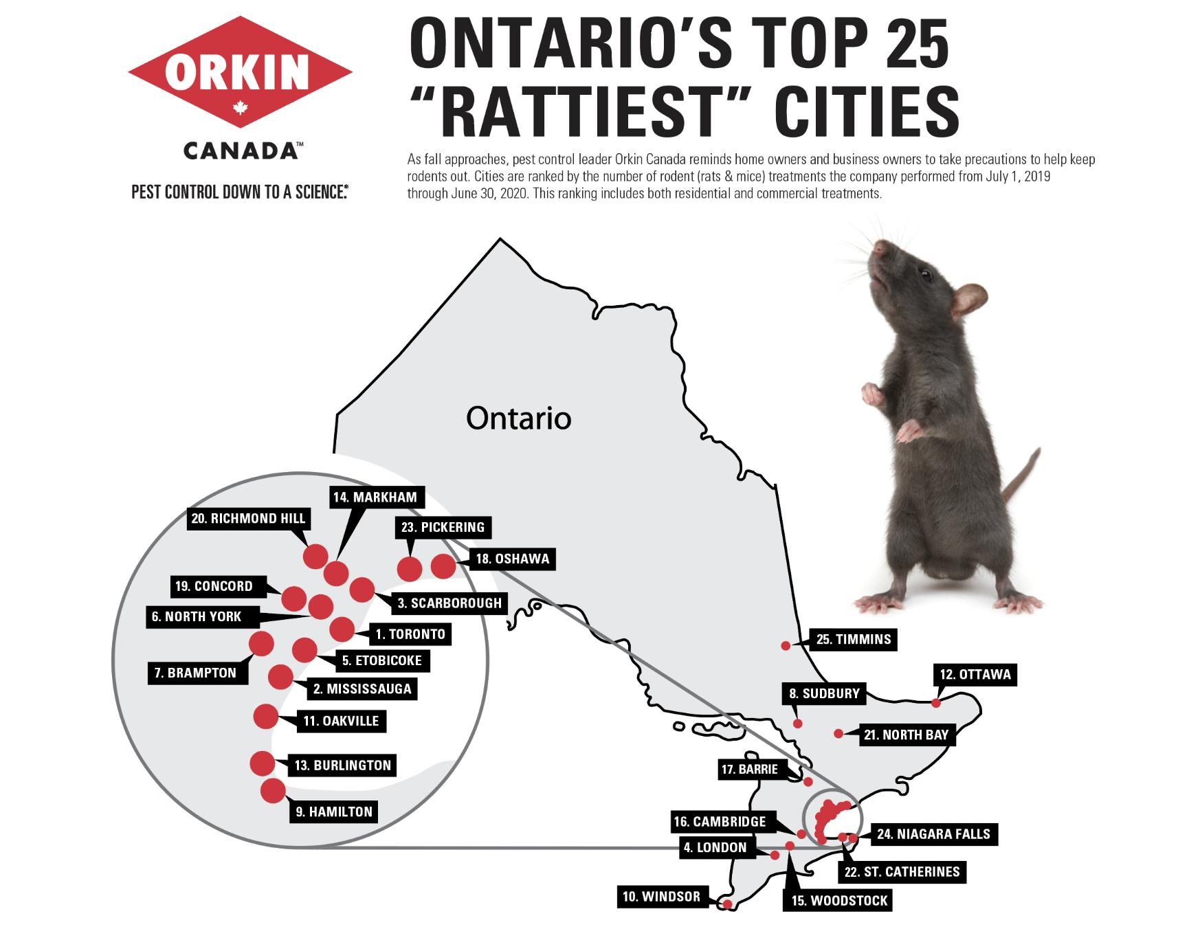 Ontario top 25 rattiest cities infographic