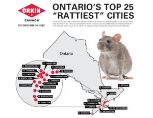 rattiest cities Ontario 2021