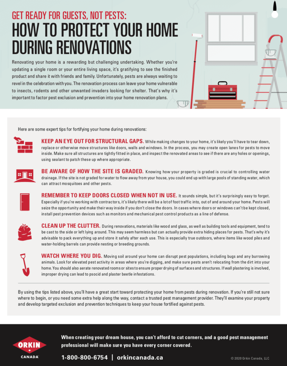 Tip sheet to protect your home during renovations