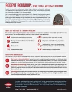 tip sheet to keep rodents from homes