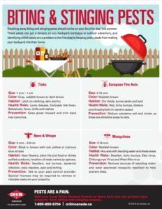 Biting pests guide
